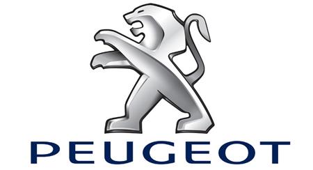 Ram-Flo for Peugeot